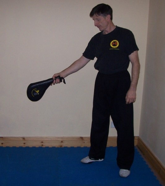 Martial Arts Training Equipment - Holding a Paddle Pad