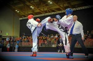 Taekwondo Champions Sparring
